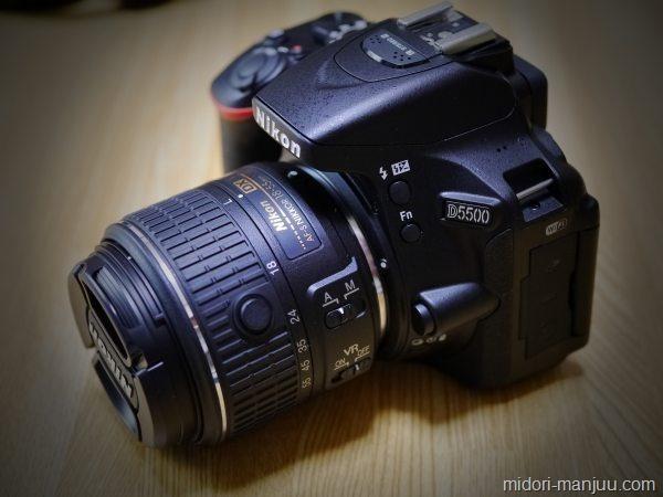 P1130830-eye